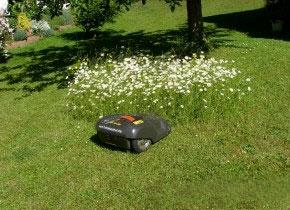 Agrarfachzeitschrift PROFI testet den Mährboter Automower 230 ACX