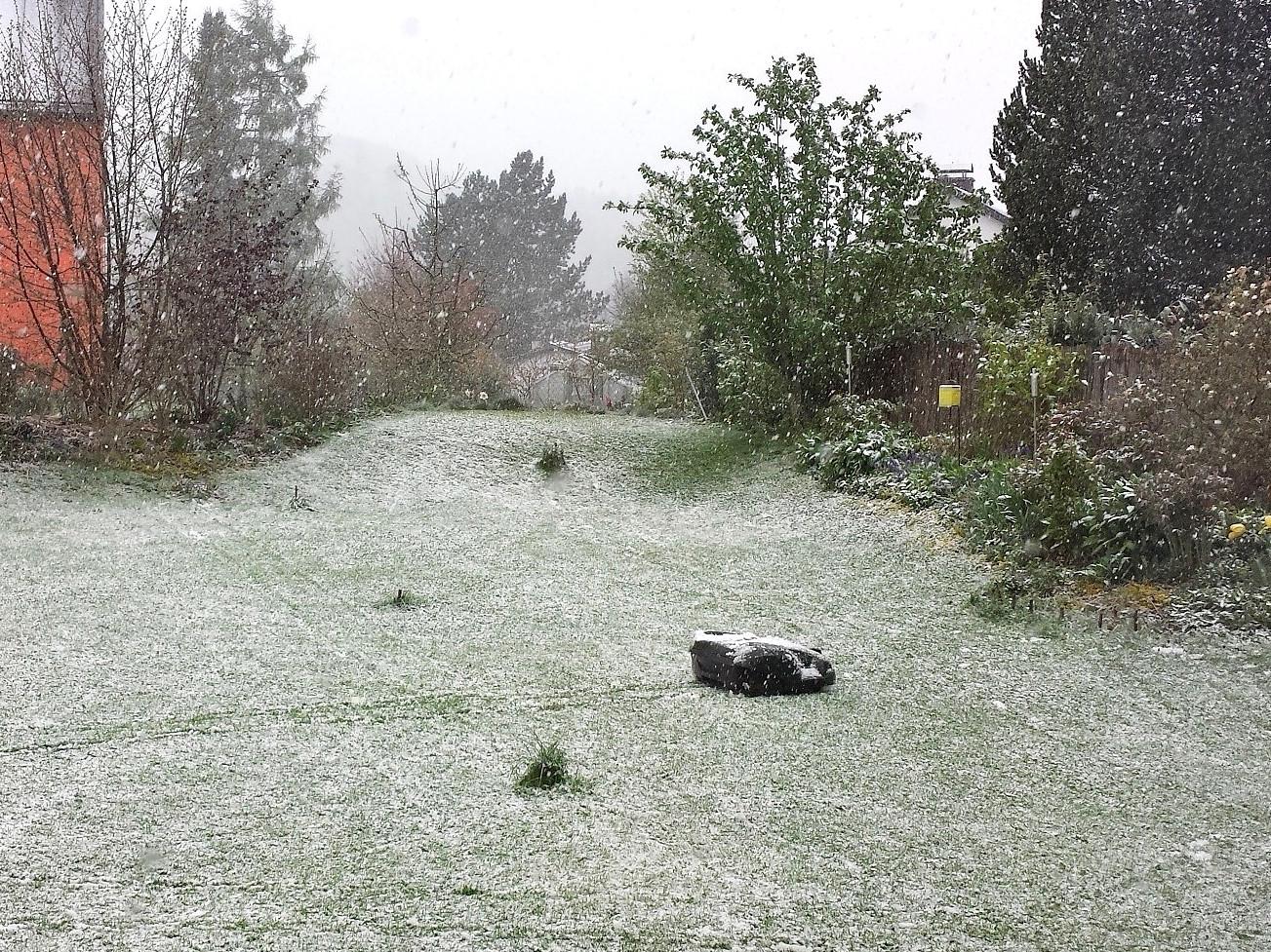 Automower im Schnee