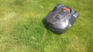 Rasen-reparieren-Box-2-Wochen