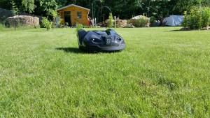 automower-330x-rasen