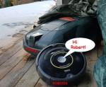1015295-Wetzel-Automower-420