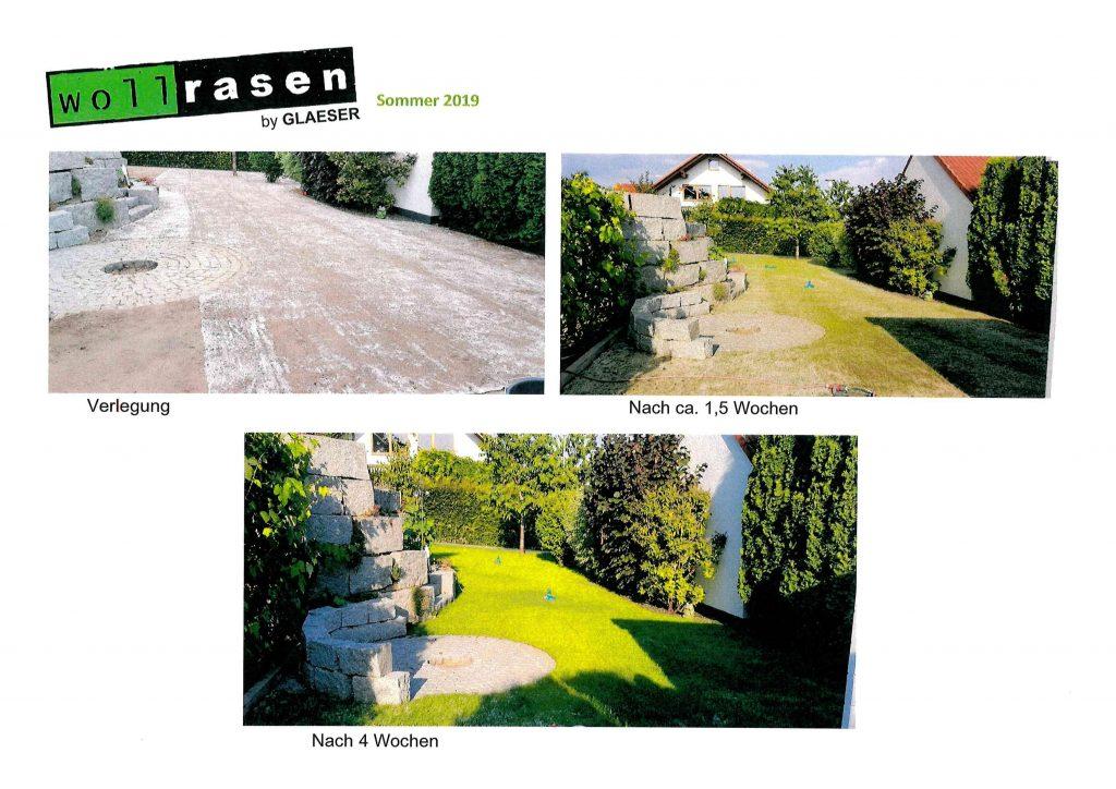 Wollrasen-Testimonial-Sommer2019
