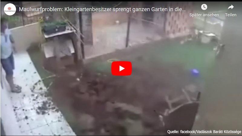 Gartenexplosion bei Mausjagd